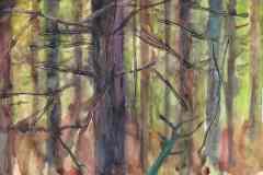 Verworren, ruhig. 21 x 30 cm. Künstleraquarellfarben, Tannennadeln und Gesso auf Büttenpapier. 2021. 250 €.