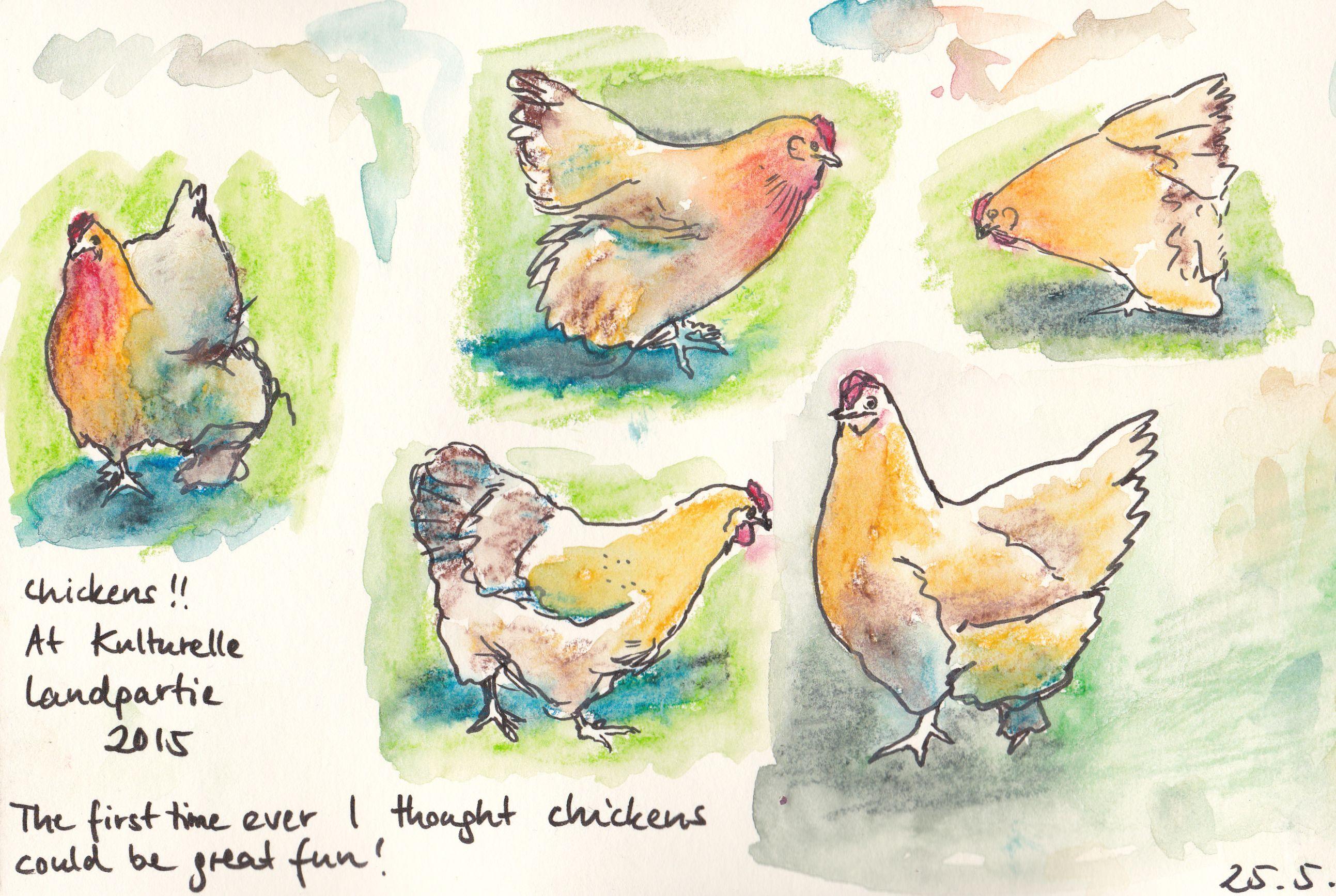 Über Hühner / About Chickens