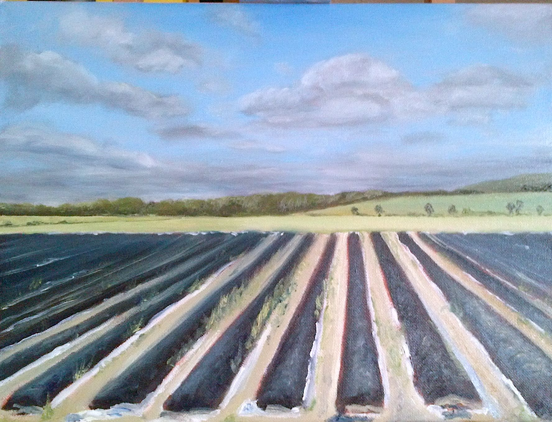 Spargelland/ Asparagus land. Öl auf Leinwand/ Oil on canvas. 30 x 40 cm.