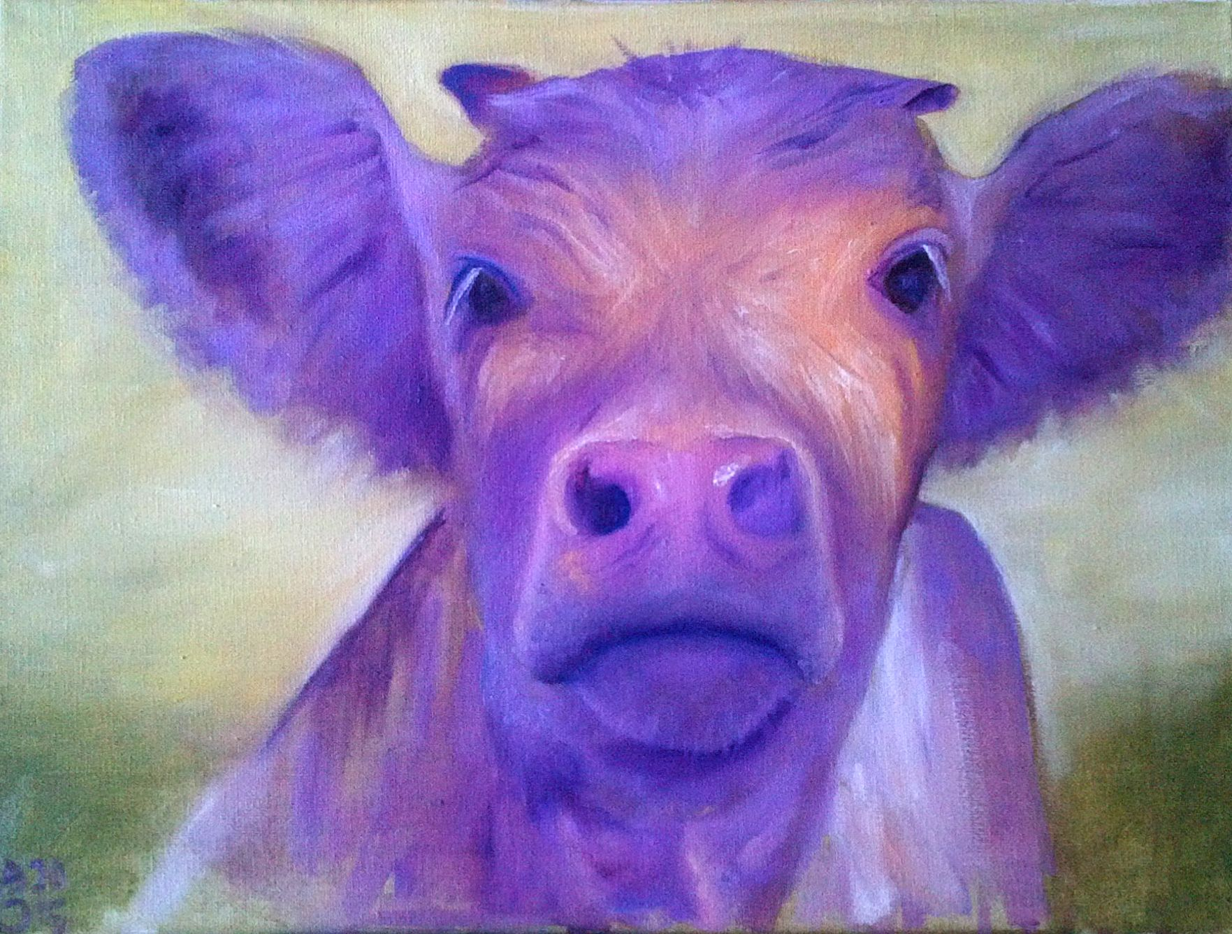 Cow, purple
