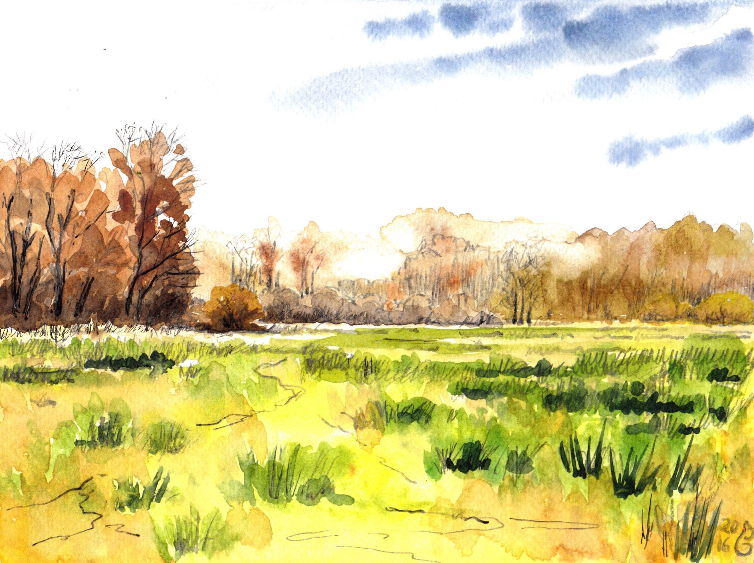 Bleak pastures | Trübe Weide