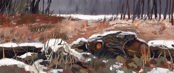 Snowy remains | Verschneite Reste