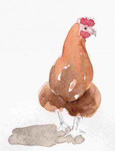 Chicken-detail
