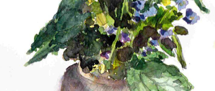 Wild flower bouquet | Wildblumenstrauß