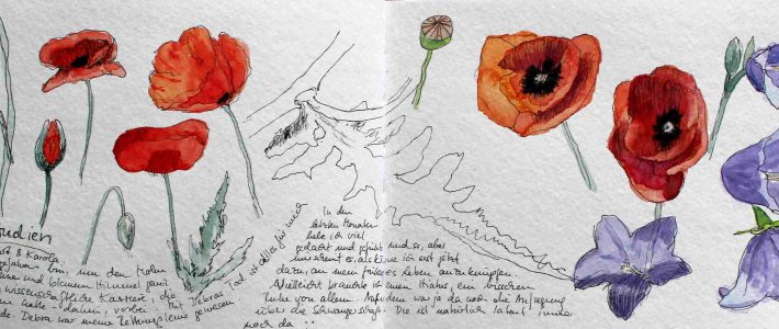 Flower sketches | Blumenskizzen