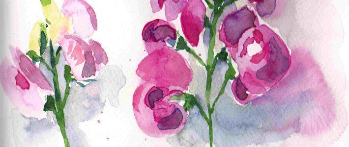 Pink flower time | Die Zeit der rosa Blumen