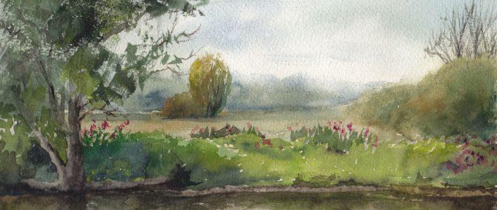 Quiet river meadows | Ruhige Wiesen am Fluss