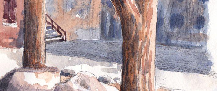 Sunlit boulders | Steine im Sonnenlicht