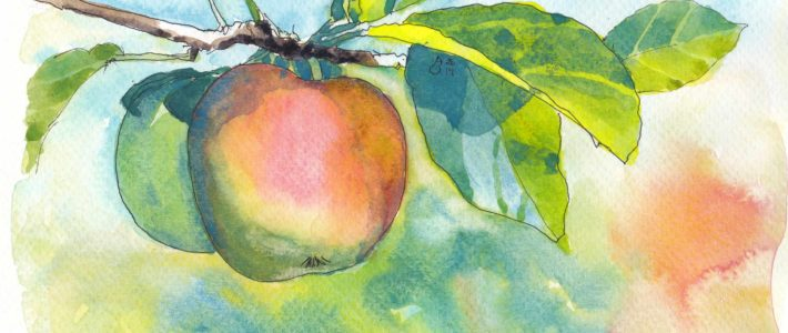 Vorletzter Test hin zum Apfelbild