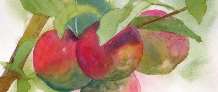 Andere Äpfel