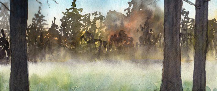 Frühmorgendlicher Nebel